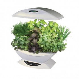 Aerogarden de color blanco con kit de hierbas