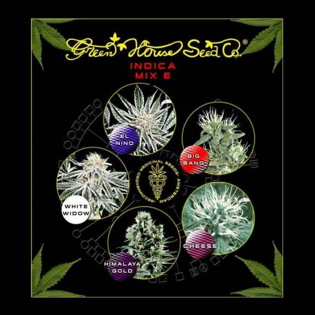 Indica Mix E Feminizadas de Green House