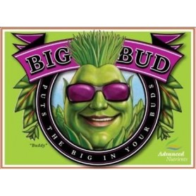 Big Bud de Advanced Nutrients