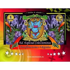 Edición Coleccionista Autoflorecientes + Rapidas de Sweet Seeds
