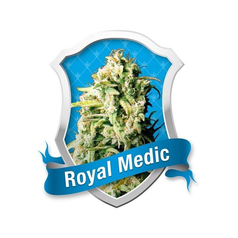 Royal Medic de Royal Queen