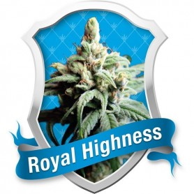 Royal Highness de  Royal Queen