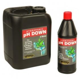 PH Down de Ionic 5L