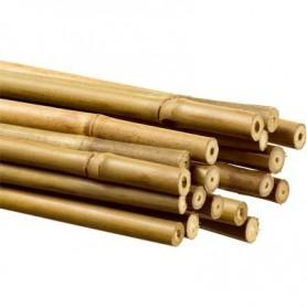 Tutor Bambú 105 cm