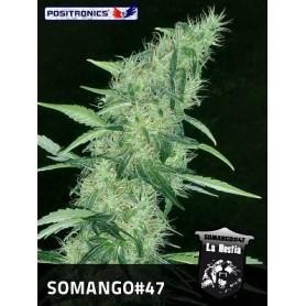 Somango 47 de Positronics