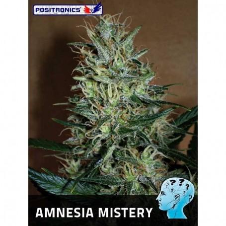 Amnesia Mistery de Positronics