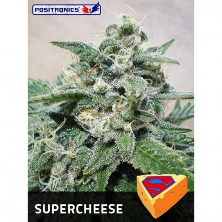 Super Cheese de Positronics