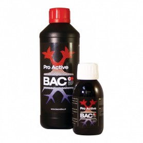 BAC  Pro Active