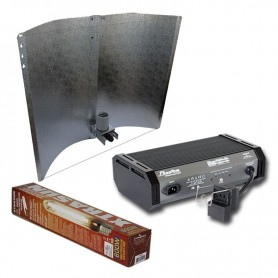 Kit 600w Adjust Tipo + Xtrasun HPS + Phantom II Reg