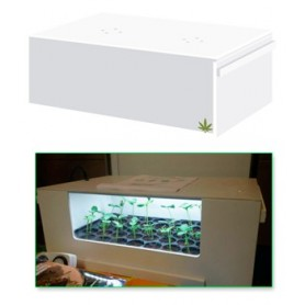 CannaBox Led