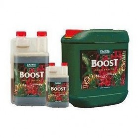 Estimulante Canna Boost Accelerator 250 ml