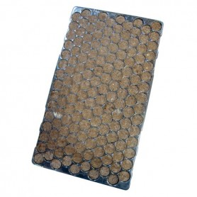 Bandeja Monkey Klon Plug 150 Alveolos